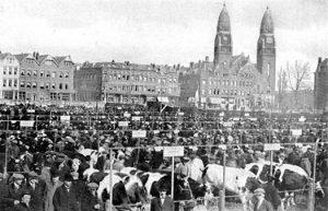De Joodse veemarkt in Rotterdam.